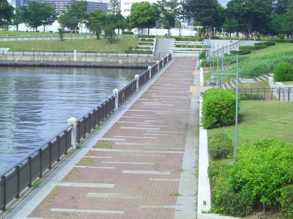 豊洲公園から東京湾大華火祭が観えます。