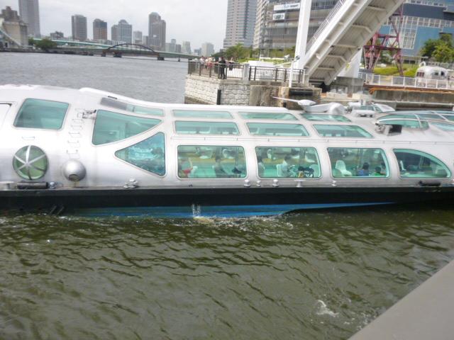 豊洲公園を歩いていたら晴海運河でヒミコに遭遇しました!