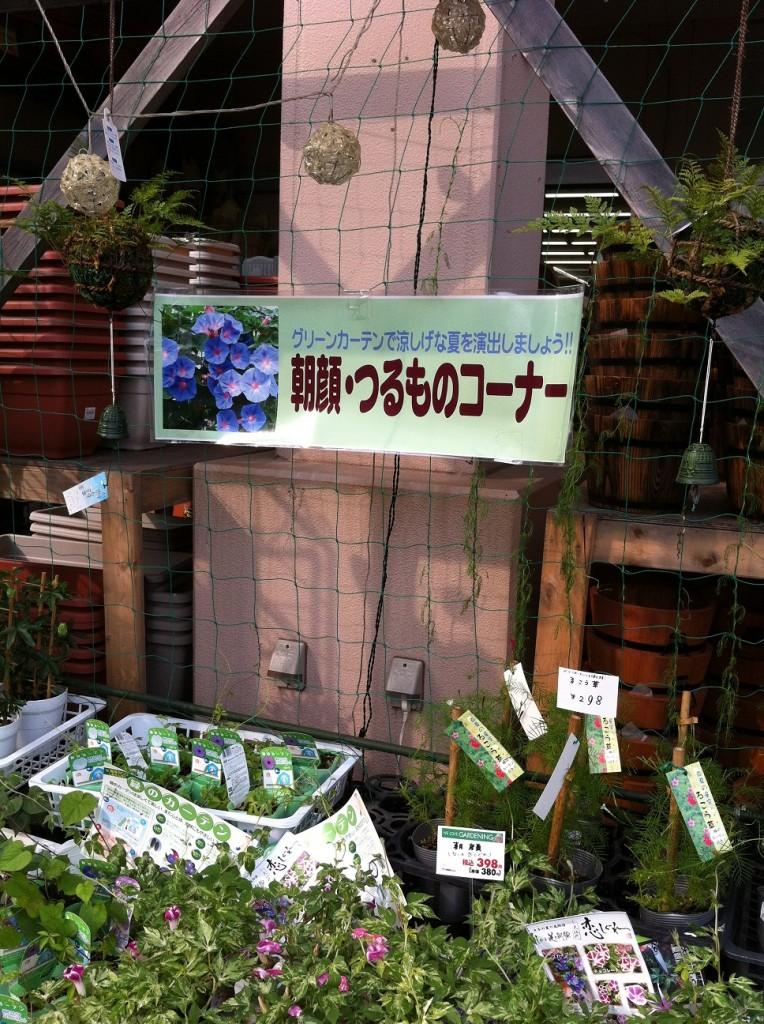 スーパービバホーム豊洲店ガーデンコーナー
