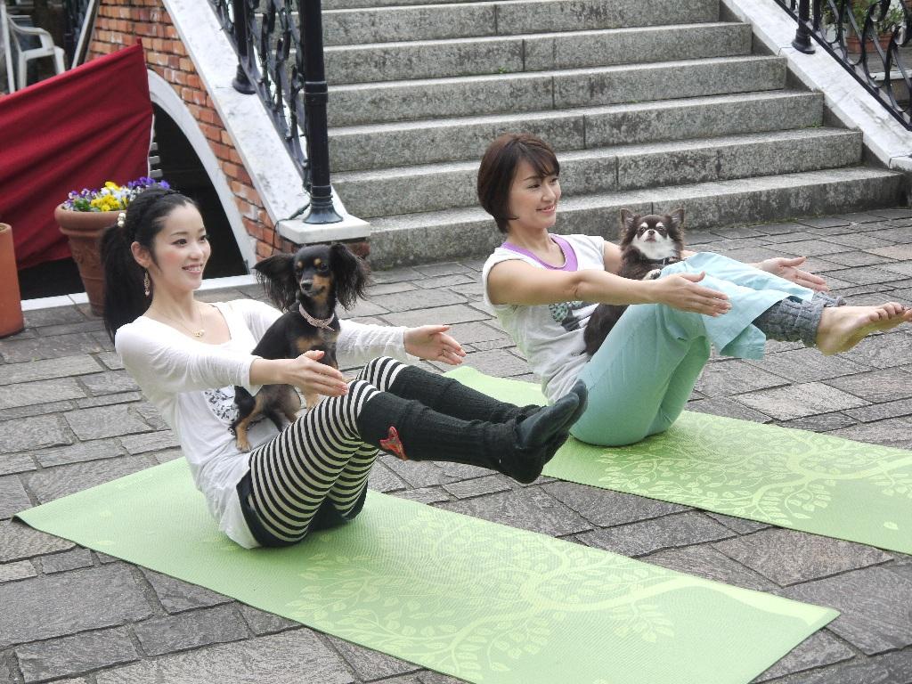 豊洲まちなみ公園でおペットヨガを開催します。