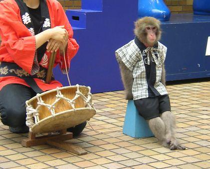 まちなみ公園新春住宅祭ハイブリッド猿回しイメージ